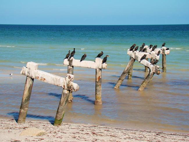 playas cercanas a merida